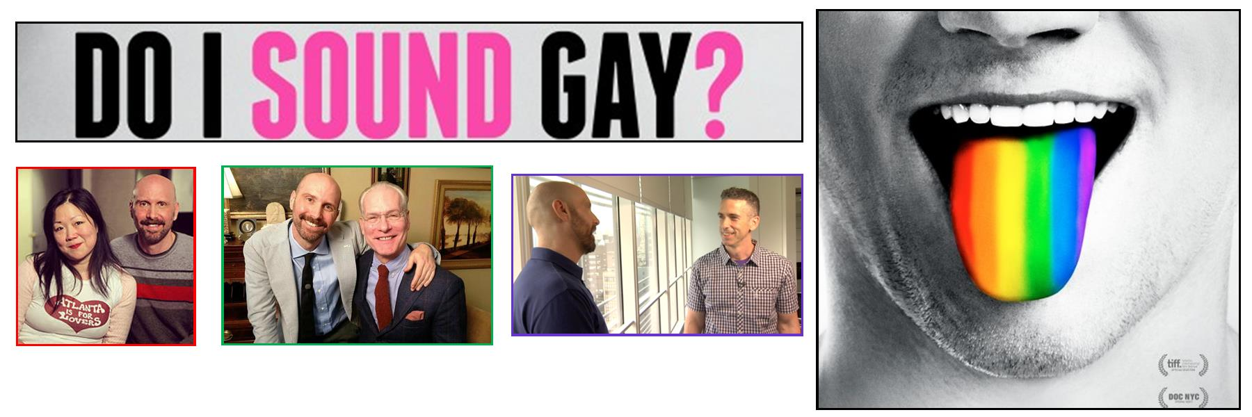 SAAF is proud to team up with the Loft for a screening of Do I Sound Gay?, a new, irreverent documentary.