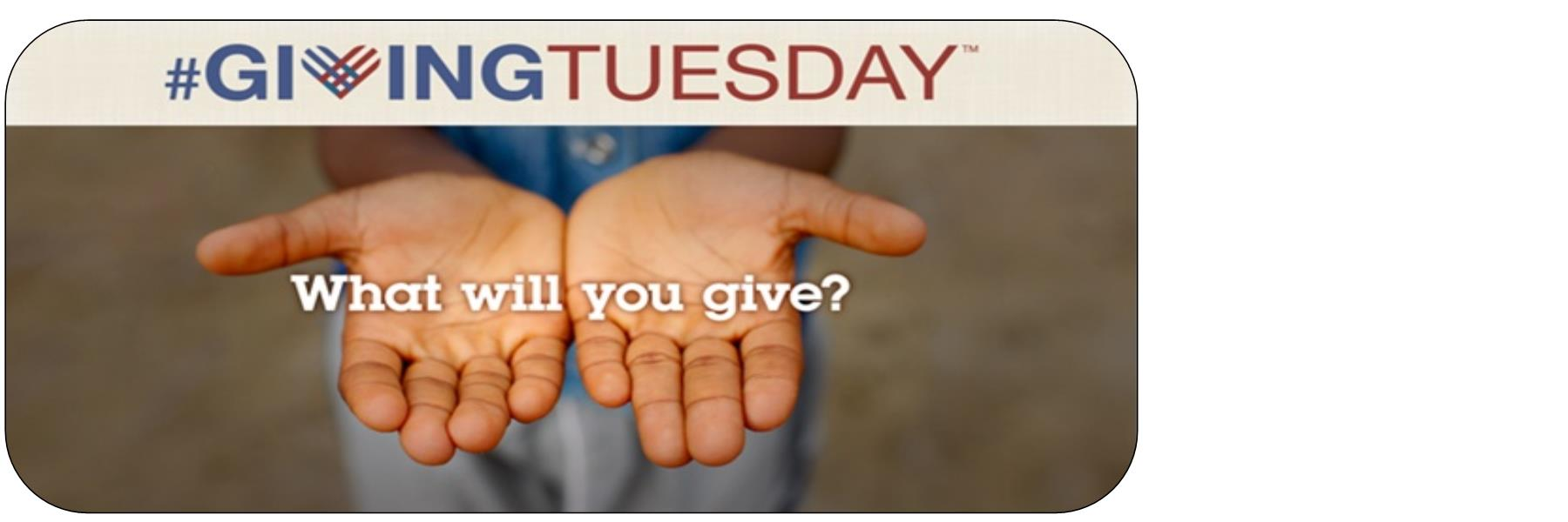 Tuesday December 1 is Giving Tuesday and your contribution to SAAF will be matched, dollar-for-dollar!